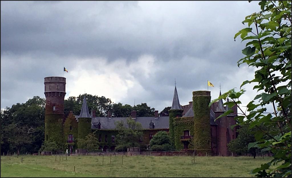 kasteel, wijnendalebos
