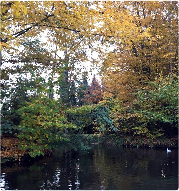 efteling, gouden, herfst