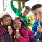 Uit met kinderen: de toeristentoren in Herentals