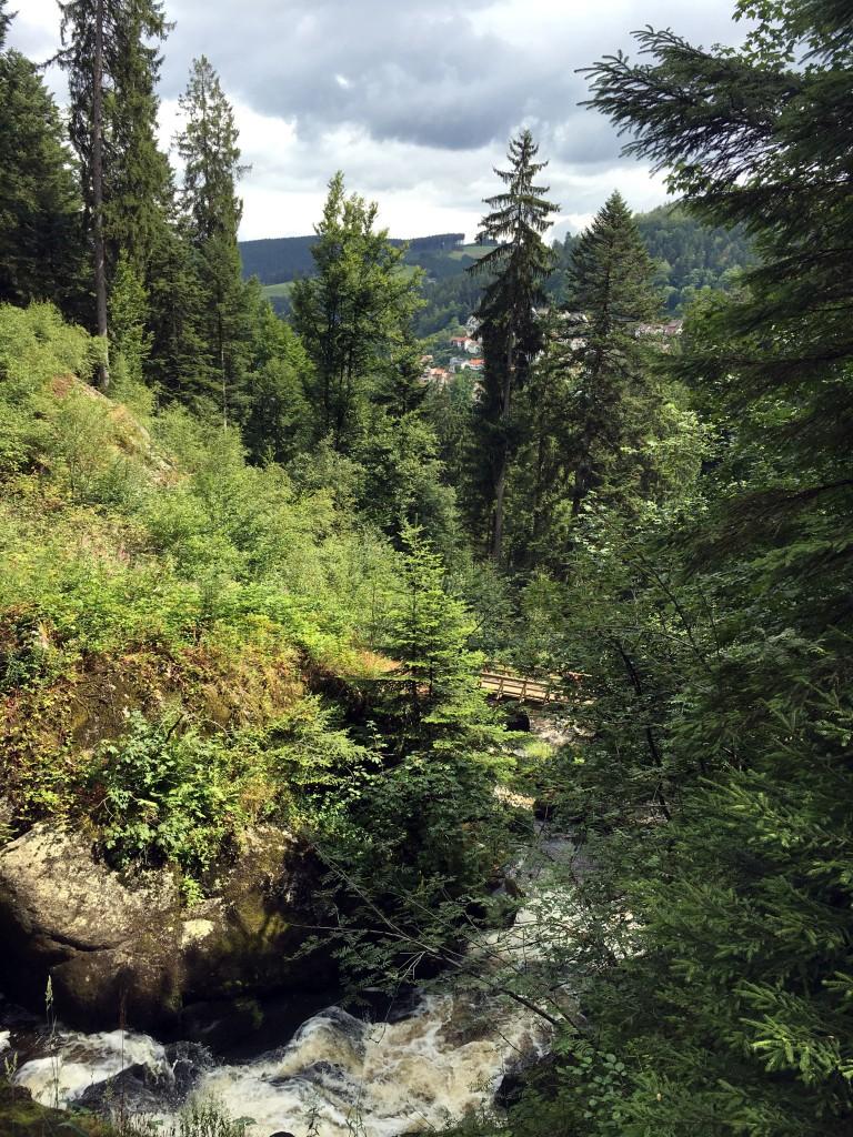 zwarte woud, duitsland, vacansoleilmaaktjeblij