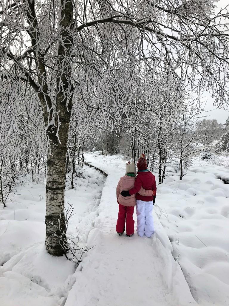 Hoge venen, sneeuw