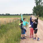 Groentechips: snel en eenvoudig