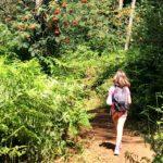 Wandelen in de Kempen: Prinsenpark Retie