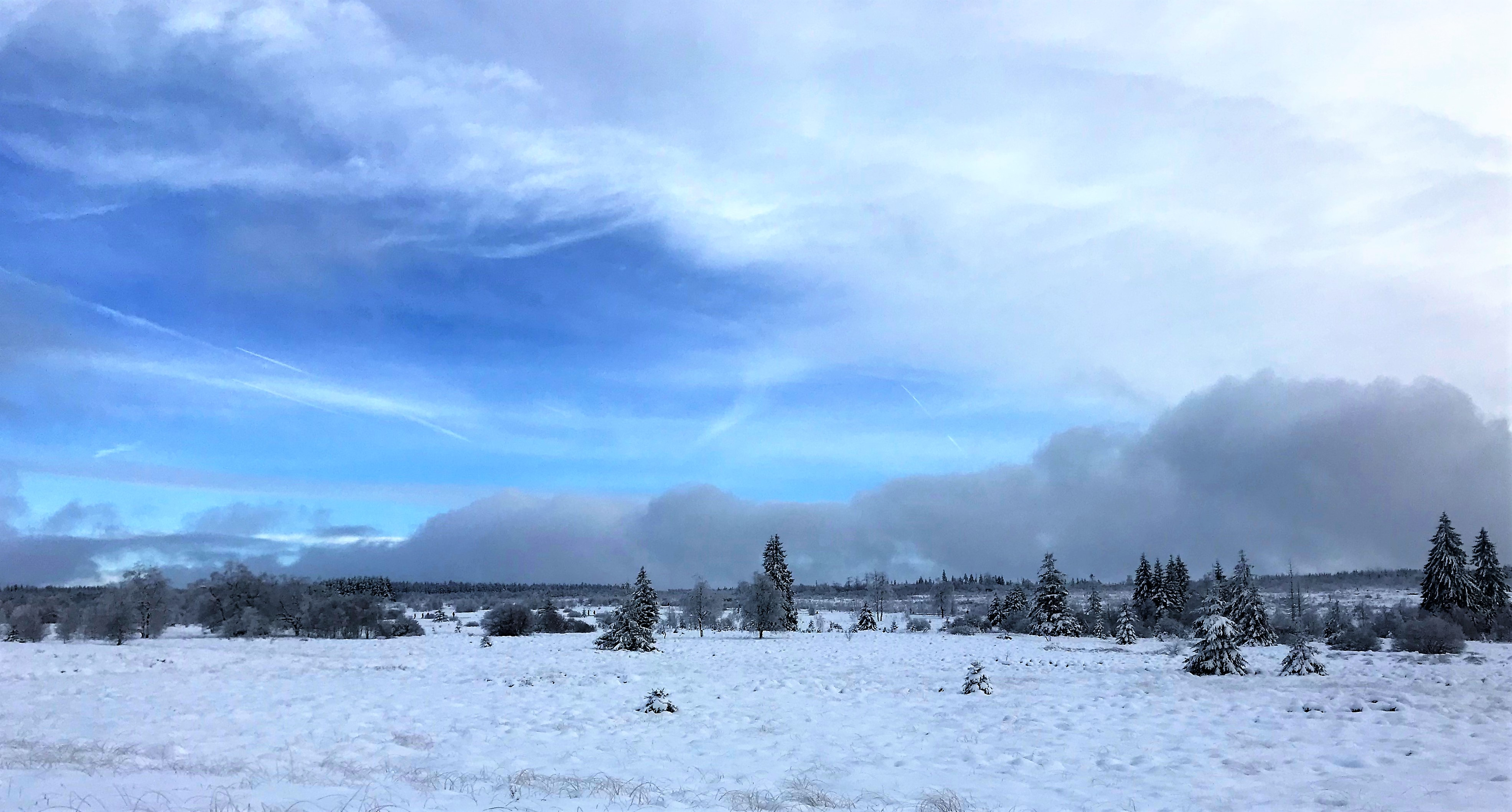 oostkantons, sneeuw, toerist in eigen land