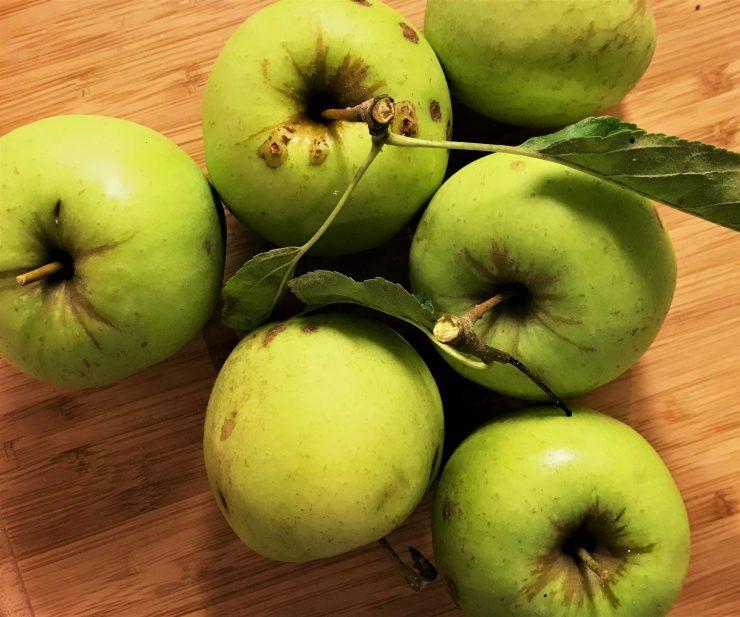 herfst, appels, eigen kweek