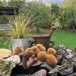 Op vakantie en toch dichtbij: Camping Wirfttal in de Duitse Eifel